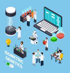 Gmo isometric composition vector
