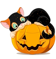 Halloween kitten vector
