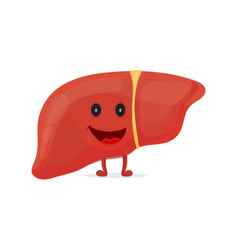 strong happy healthy liver character vector image vector image