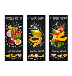 tropical fruits chalkboard label set vector image