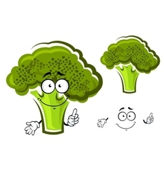 Cartoon green fresh broccoli vegetable vector