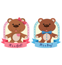 Banner design with teddy bears in blue an pink vector