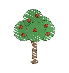 Drawing tree fruit natural vector