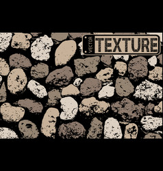 texture of multicolored stone coquina wall in vector image
