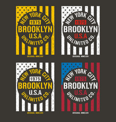 vintage new york city typography vector image