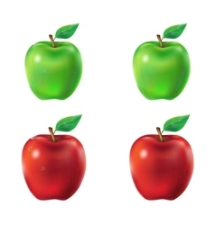 Set of green and red apples vector image