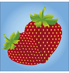 Two strawberries isolated on blue background vector