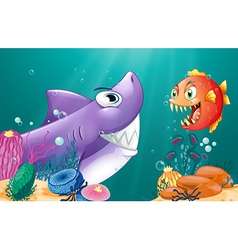 A shark and a piranha under the sea vector image vector image