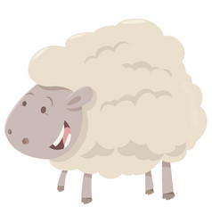 Farm sheep animal vector
