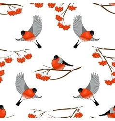 Seamless pattern with bullfinches and branch of vector image