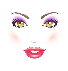 Womans face with makeup vector