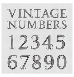 Vintage patterned numbers numbers in floral vector