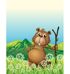 A beaver near the grass vector