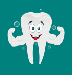 Strong and healthy tooth vector