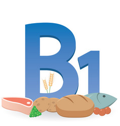 Foods rich in vitamin b1 vector