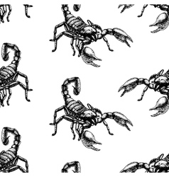 Hand drawn seamless pattern with scorpion vector