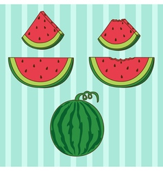 Set of watermelon vector
