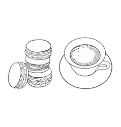 sketch cap of mathca tea macaroni vector image