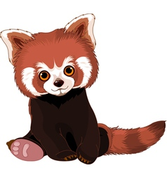 Cute Red Panda vector image vector image