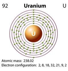 Diagram representation of the element uranium vector image