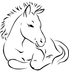 Foal - black outline vector