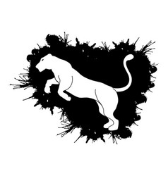 Panther or lioness jumping vector