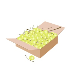 Star gooseberry fruits in a shipping box vector
