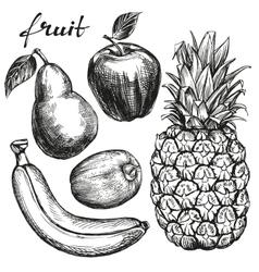 Frui set pear apple banana kiwi pineapple hand vector