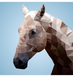 Head of a bay horse in triangular style vector