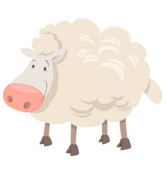 sheep animal character cartoon vector image vector image