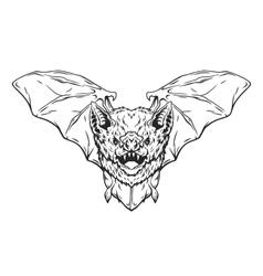 Vampire bat in flight vector