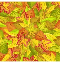 Seamless pattern with autumn leaves autumnal fall vector