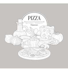 Pizza ingredients vintage sketch vector