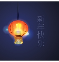 chinese lantern vector image