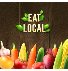 Eco agricultural vegetables poster vector