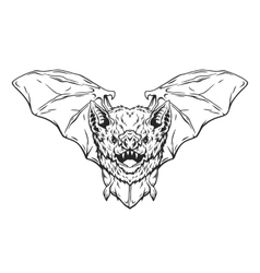 Vampire bat in flight vector image