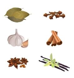 Garlic  cinnamon sticks dried cloves bay leaves vector