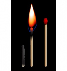 burning matchstick vector image