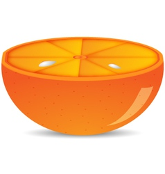 Half of orange isolated vector image vector image