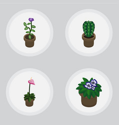 Isometric houseplant set of flowerpot grower vector
