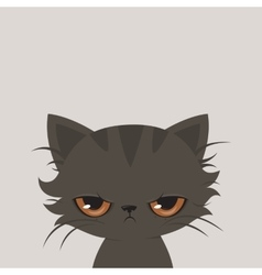 Angry cat cartoon Cute grumpy cat vector image
