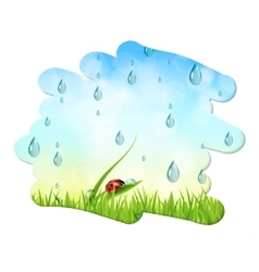 Fresh nature background with water drops and sky vector image