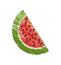 drawing watermelon fruit food vector image vector image