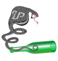 Snake in a bottle vector