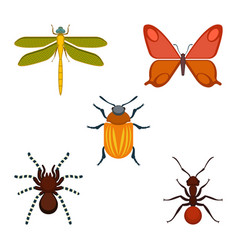 collection of bugs and insects on vector image vector image