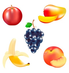 fruits 2 vector image vector image