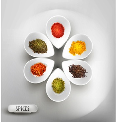 white bowl on the table the filling of spices vector image