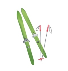 Cross country old fashioned skis vector