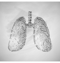 Lung icon vector