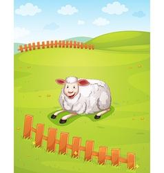 A sheep vector